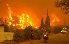 ΝΕΑ ΕΙΔΗΣΕΙΣ (Μεγάλη φωτιά στην Ηλεία – Αγρότες έκαιγαν κλαδιά με ανέμους 8 μποφόρ)