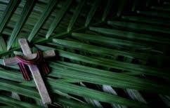 ΝΕΑ ΕΙΔΗΣΕΙΣ (Αλέξης Τσίπρας: Από τα «ωσαννά» στο «σταυρωθήτω»;)