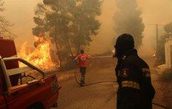 ΝΕΑ ΕΙΔΗΣΕΙΣ (Μάχη με τις φλόγες στην Κινέτα – Εκκενώθηκαν οι οικισμοί)