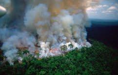 ΝΕΑ ΕΙΔΗΣΕΙΣ (Η Βραζιλία στέλνει στρατό για την προστασία του Αμαζονίου)