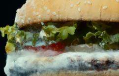 ΝΕΑ ΕΙΔΗΣΕΙΣ (Aναπάντεχο: Η διαφήμιση της Burger King με το… μουχλιασμένο μπέργκερ)