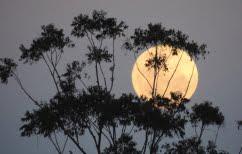 ΝΕΑ ΕΙΔΗΣΕΙΣ (Αυστραλία: Αυστηρότερα μέτρα κατά του κορωνοϊού)