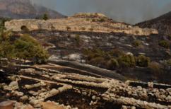 ΝΕΑ ΕΙΔΗΣΕΙΣ (Αυτοψία Μενδώνη στις Μυκήνες: Η λιγότερη δυνατή, η ζημιά στον αρχαιολογικό χώρο)