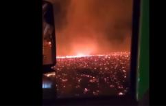 ΝΕΑ ΕΙΔΗΣΕΙΣ (Καλιφόρνια: Απίστευτες σκηνές – Σχηματίστηκε ανεμοστρόβιλος φωτιάς)