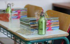 ΝΕΑ ΕΙΔΗΣΕΙΣ (Σχολεία: Κλειστές αίθουσες και κάποια σχολικά συγκροτήματα λόγω κρουσμάτων κορωνοϊού)