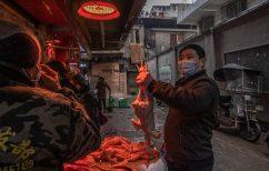 ΝΕΑ ΕΙΔΗΣΕΙΣ (Ο κορονoϊός προήλθε από κινεζικά εκτροφεία, λέει μέλος της αποστολής του ΠΟΥ)